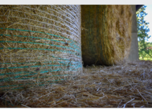 Baler Twine in Adelaide